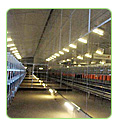 led grow fixtures for agriculture light solar