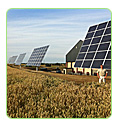solar grains dryers corn dry crop