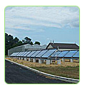 solar green house glasshouses