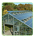 solar power glasshouse farming
